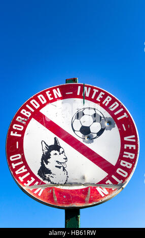 No dogs and football play - Stock Photo