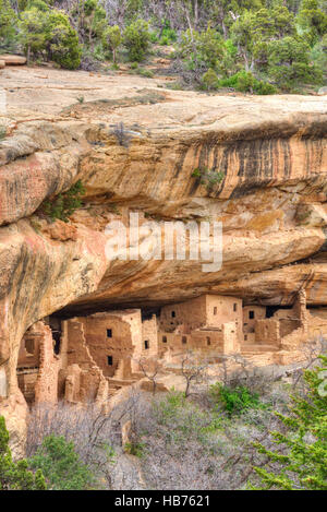 Anasazi Ruins, Spruce Tree House, Mesa Verde National Park, UNESCO World Heritage Site, 600 A.D. - 1,300 A.D., Colorado, - Stock Photo