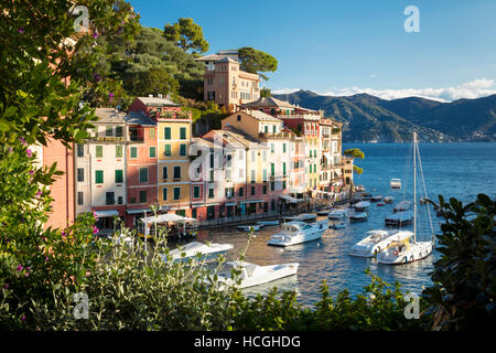 Early morning view over harbor town of Portofino, Liguria, Italy - Stock Photo