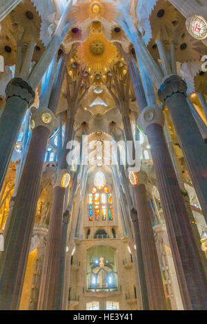 The columns of the inside of the Sagrada Familia in Barcelona, Spain look like a forest of concrete trees. - Stock Photo