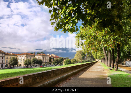 Park on medieval city wall in Lucca, Tuscany, Italy - Stock Photo