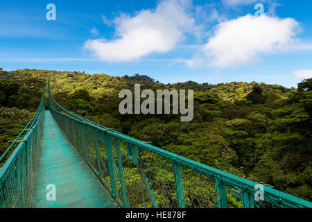 Suspended bridge over the canopy of the trees in Monteverde, Costa Rica, Central America - Stock Photo