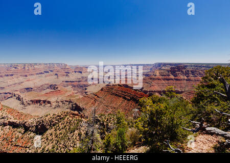 Grand Canyon National Park is the United States 15th oldest national park. Named a UNESCO World Heritage Site in - Stock Photo