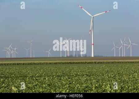 Wind wheels near by Titz, - Stock Photo