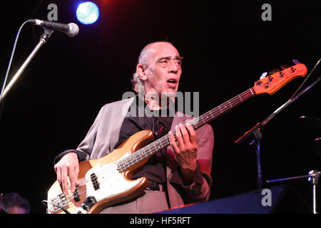 norman watt-roy of the blockheads playing bass at Weyfest Rural Life Centre Tilford Surrey - Stock Photo