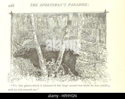 [The Sportsman's Paradise; or, the Lake Lands of Canada ... With illustrations by D. C. and H. Beard. Second edition.] - Stock Photo