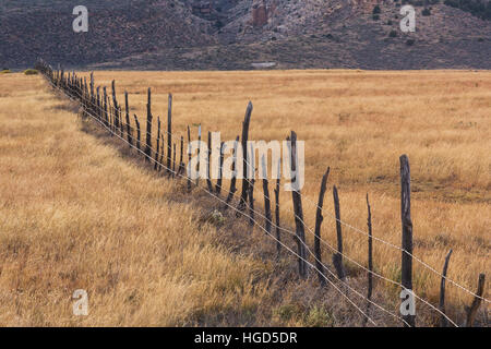 Fence on rangeland along the House Rock Road, on or immediately adjacent to Vermilion Cliffs National Monument, - Stock Photo
