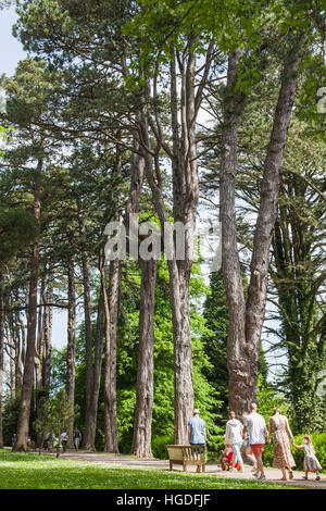 Wales, Cardiff, St Fagan's, Museum of Welsh Life, Tourists Walking Through Woods - Stock Photo