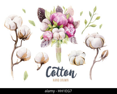 Set of hand drawn watercolour Cotton boll, peonies and feathers. - Stock Photo