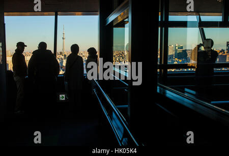 Townscape, View of skyline from a skyscraper, in background Skytree tower, Tokyo, Japan - Stock Photo
