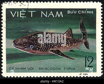 A postage stamp printed in VIETNAM shows a Fish Rhincodon typus,  series, circa 1980 - Stock Photo