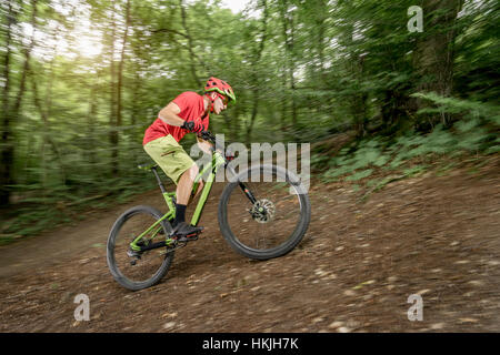 Mountain biker riding uphill in forest, Bavaria, Germany - Stock Photo