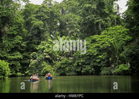 Tourists in Canoes, Rainforest, Tortuguero National Park, Costa Rica. - Stock Photo