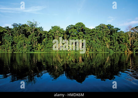Freshwater natural canals in Tortuguero National Park, Caribbean coast, Costa Rica. - Stock Photo