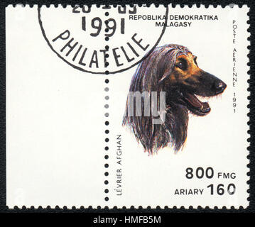 A postage stamp printed in Republica Malagasy shows a dog Levrier afghan, from series Breeds of dogs ,1991 - Stock Photo
