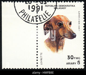 A postage stamp printed in Republica Malagasy shows a dog  Levrette dog, from series Breeds of dogs , circa 1991 - Stock Photo