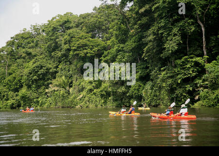 Tourists in kayaks on freshwater canals in Tortuguero National Park, Caribbean coast, Costa Rica. - Stock Photo