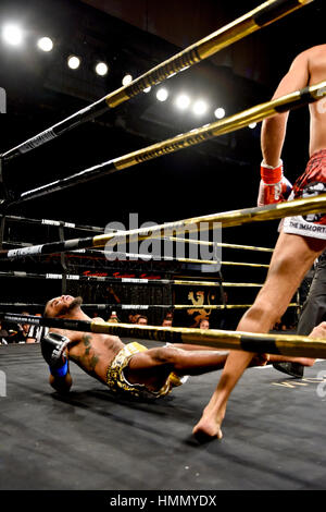 Las Vegas, USA. 03rd Feb, 2017. Las Vegas, Nevada February 3 2017 - Lion Fight 34 at the Tropicana Hotel and Casino - Stock Photo