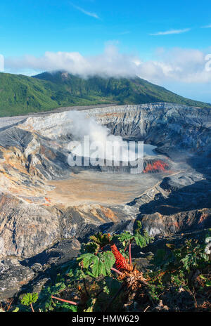 Caldera with crater lake, steam rising from Poas Volcano, Poas Volcano National Park, Costa Rica - Stock Photo