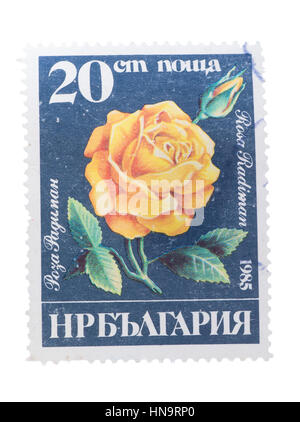 BULGARIA - CIRCA 1985: a stamp printed in  shows flowers - Stock Photo
