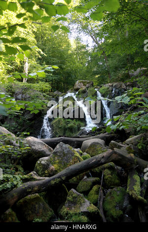 The Dondalen waterfall in woods near Gudhjem on the Baltic island of Bornholm, Denmark - Stock Photo
