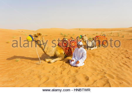 A man offers camel rides at the Dubai Desert Conservation Reserve. - Stock Photo