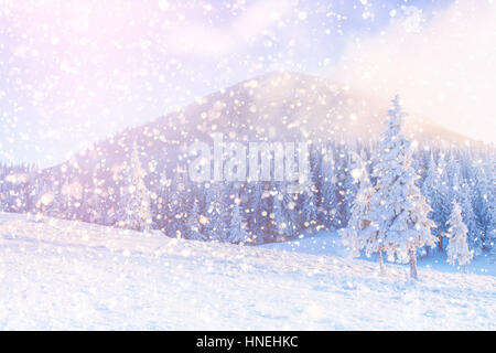 winter landscape trees snowbound, bokeh background with snowflak - Stock Photo