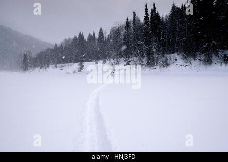 Distant view of woman walking on snow covered field during snowing - Stock Photo