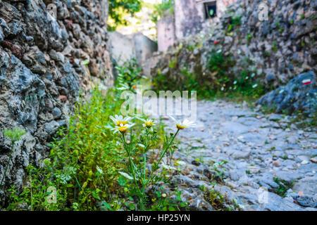 kayakoy village street,kayakoy sokaklari - Stock Photo
