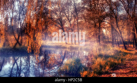 Autumn forest and lake in sunset - Stock Photo
