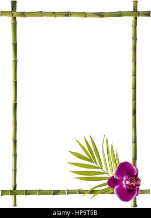 Rahmen aus Bambusstangen und einer Orchideenbluete - Stock Photo
