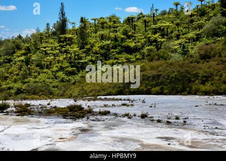 Scenic landscape view of Orakei Korako geothermal park, New Zealand, North Island - Stock Photo