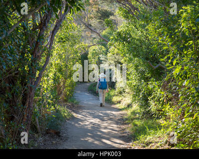 Abel Tasman National Park, Tasman, New Zealand. Hiker approaching the southern end of the Abel Tasman Coast Track - Stock Photo
