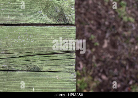 Details of an old wooden plank colored in green, ground in blurry background. - Stock Photo