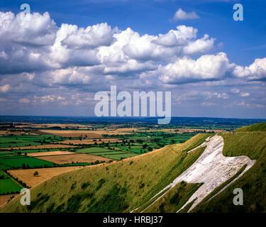 GB - WILTSHIRE:  Westbury White Horse - Stock Photo