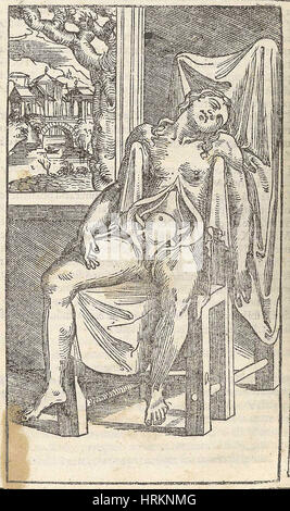 Historical Anatomical Illustration - Stock Photo