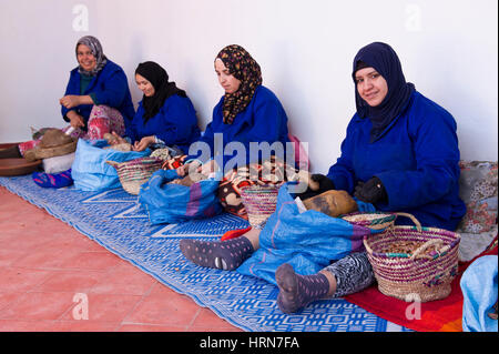 Argan Fruit from the Argan Trees (Argania spinosa) in Southwest Morocco being processed into Argan Oil - Stock Photo