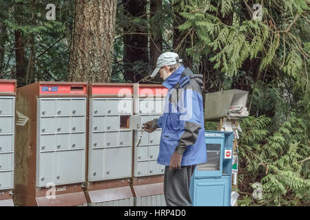 A 61 year old man picks up his mail from a compartment in a Canada Post rural community mailbox, with forest in - Stock Photo