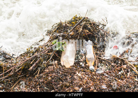 plastic bottles of irn bru washed up on beach in the Clyde Estuary - Stock Photo