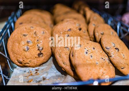 Macro closeup of chocolate chip cookies on tray - Stock Photo