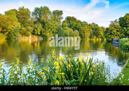 River Thames near Iffley Lock. Oxford, Oxfordshire, England, UK - Stock Photo