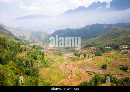 Rice paddies in the mountains near Sapa village, Northern Vietnam. - Stock Photo