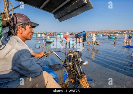 Vietnam, South Central Coast region, Mui Ne fishing village, return from fishing - Stock Photo