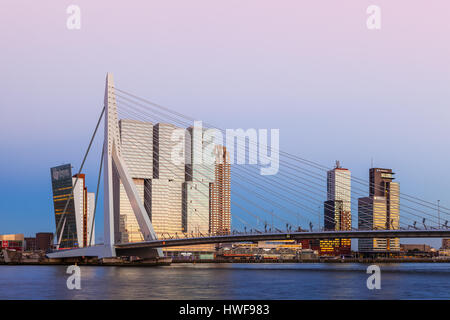 Erasmus Bridge, Rotterdam, Netherlands - Stock Photo