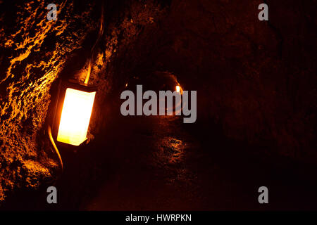 The Thurston Lava Tube in Hawaii Volcano National Park, Big Island - Stock Photo