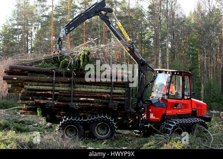 SALO, FINLAND - NOVEMBER 19, 2016: Unnamed operator stacks up wood on the bunk of Komatsu 845 forestry forwarder - Stock Photo