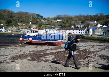 Fishguard Old Harbour, Pembrokeshire, Wales UK, Friday 24 March 2017 UK weather: Glorious sunshine and clear blue - Stock Photo