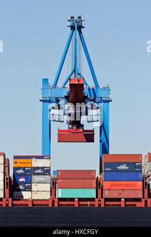 Container bridge in the container terminal Altenwerder in the Hamburg harbour, container bridge At the containers - Stock Photo
