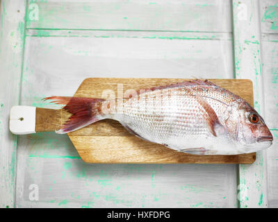 Fresh red snapper fish on chopping board ready for filleting - Stock Photo