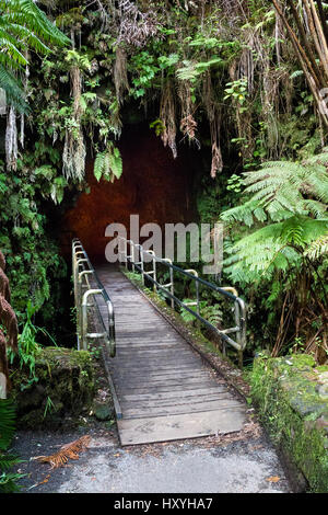 Entrance to the Thurston Lava Tube in the Hawaii Volcanoes National Park on Big Island, Hawaii, USA. - Stock Photo